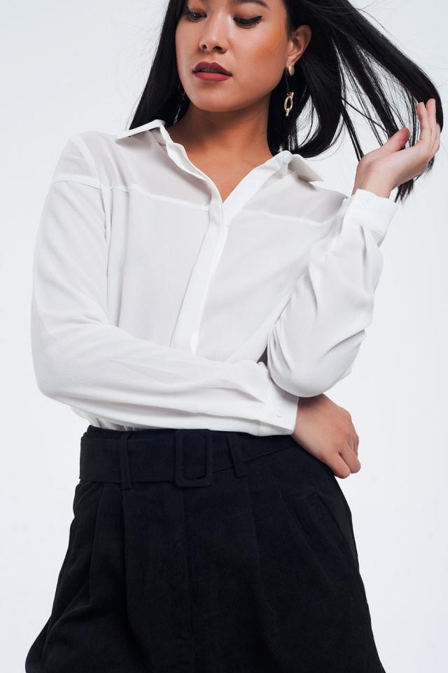 Camisa de creme transparente