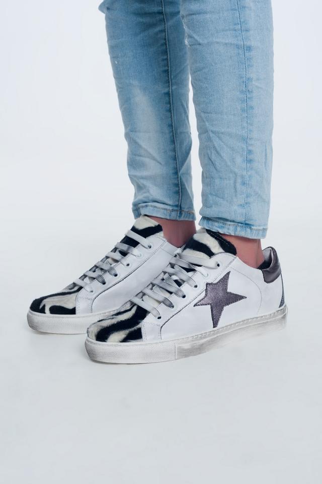 Sapatos zebra